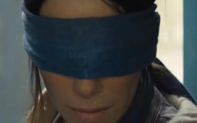 What's All This Buzz About Birdbox?